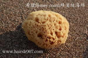 20141028希臘Honey comb蜂巢級海綿正面縮小1